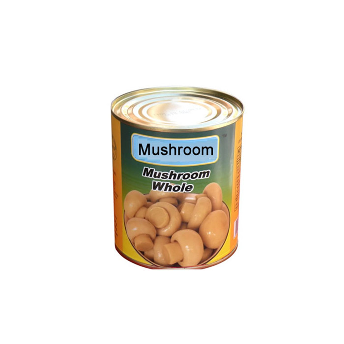 800g canned mushrooms factory