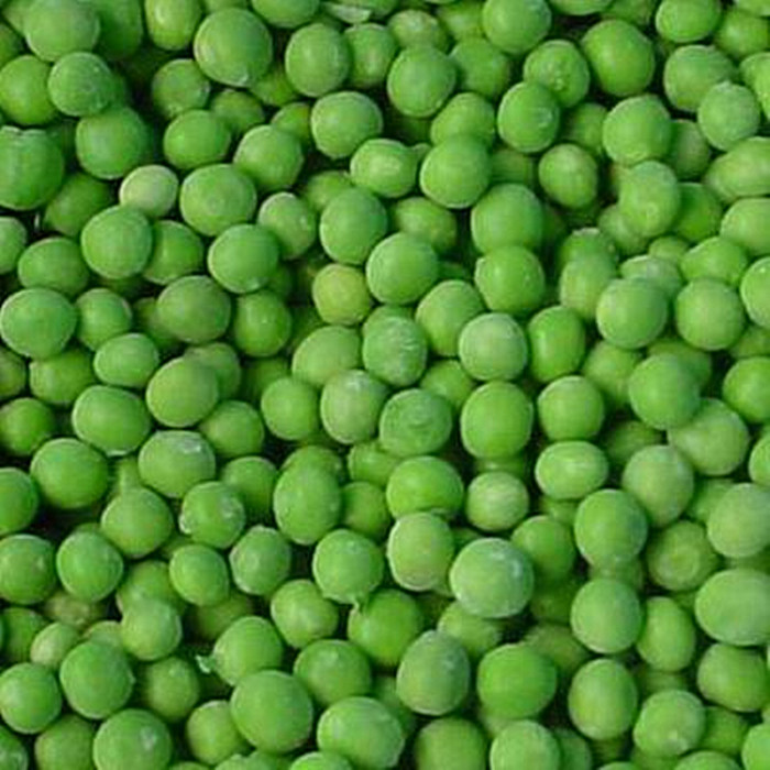 canned green peas manufacturer