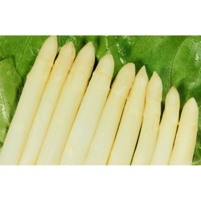 370ml canned white asparagus